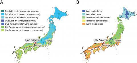 A koppen climate classification and a Potential natural vegetation map of Japan