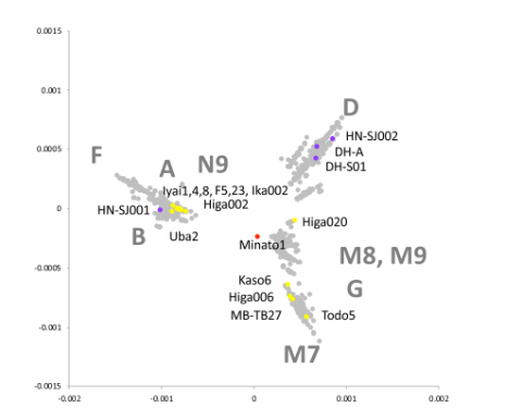 Multi Dimensional Scaling (MDS) plot of whole coding sequences of mitogenome of Paleolithic, Jomon, Yayoi and present-day individuals in Japan